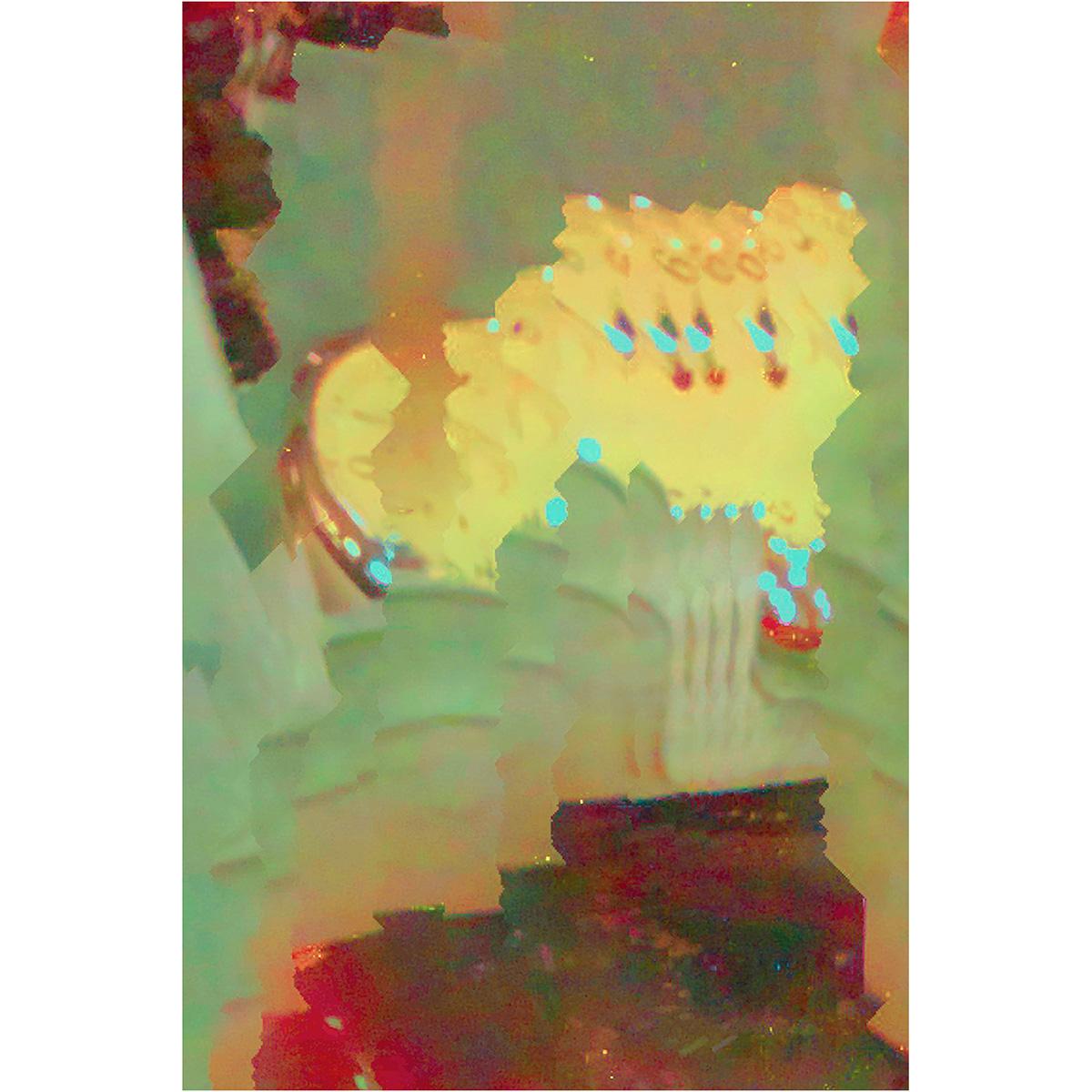 Elias Wessel: Images Through an Algorithmic Lens – Zur Visualisierung der Wirklichkeit, IMG-5048, 2018 – 2019, Farbfotografie, Pigmentdruck auf Hahnemühle Papier, Kleinformat gerahmt: 33,2 x 25,8 cm